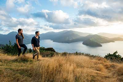 Hike & Drive 25 Tage ab Auckland