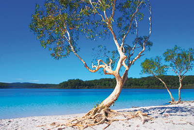 -fraser_island_discovery_group_2.jpg