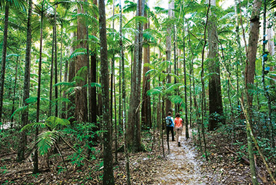 -fraser_island_discovery_group_8.jpg