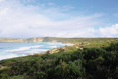 Australien Golfreisen und GolfurlaubAustralien Golfreisen und Golfurlaub