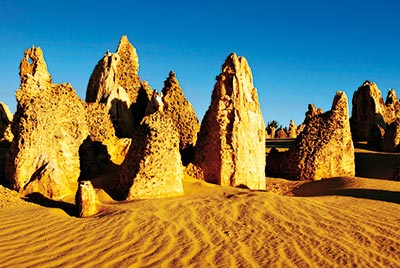 Pinnacles Day Tour