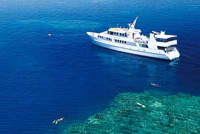 Spirit of Freedom Tauchkreuzfahrt Coral Sea 5 Tage ab Cairns