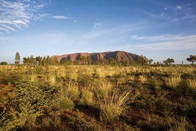 Uluru Kangaroo Dreaming Safari 5 Tage ab Alice Springs